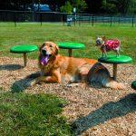 dog park barkpark